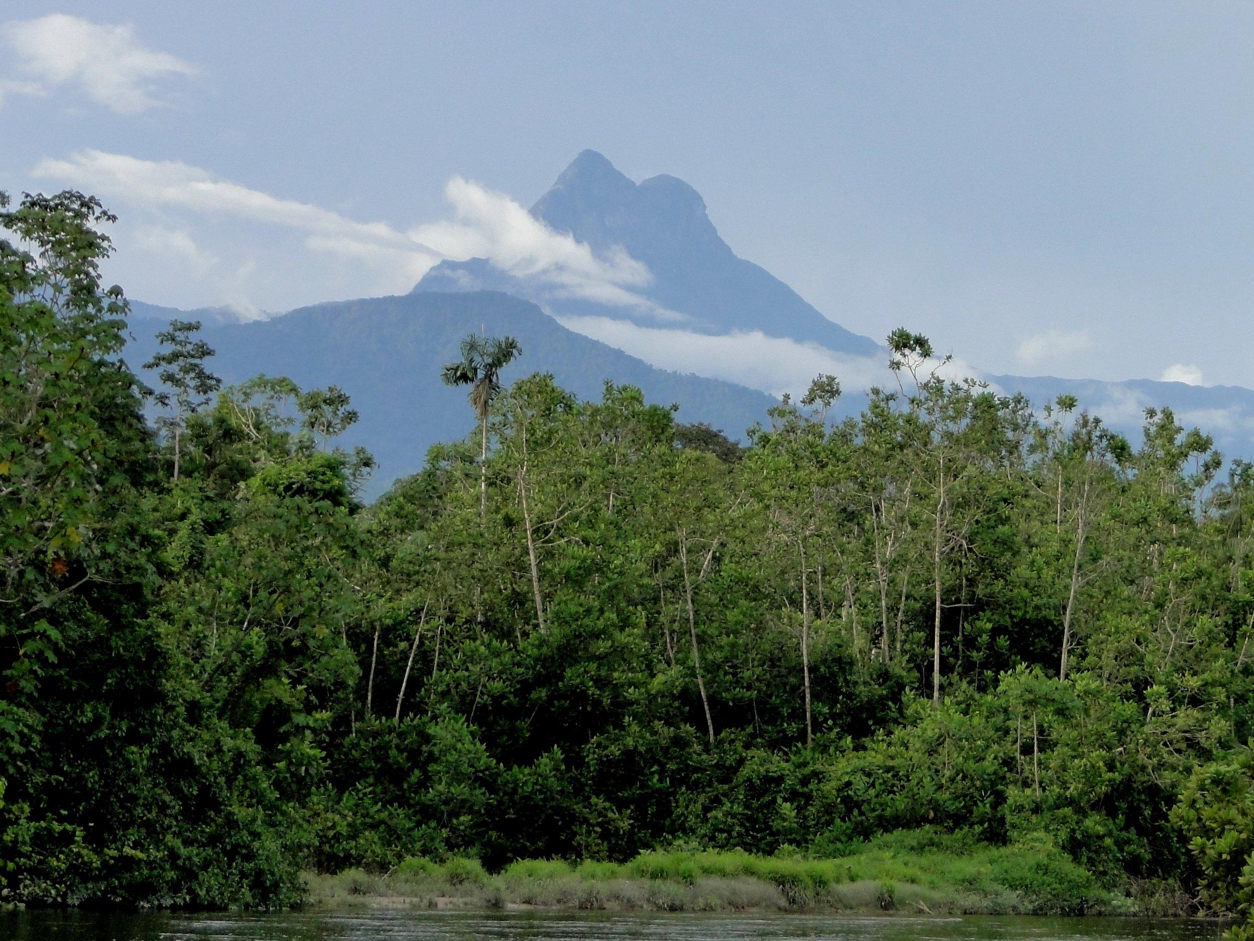 Revisão do IBGE confirmou o Pico da Neblina como o ponto mais alto do Brasil, com 2.995,30 metros em relação ao nível médio do mar. Foto Arquivo ICMBio