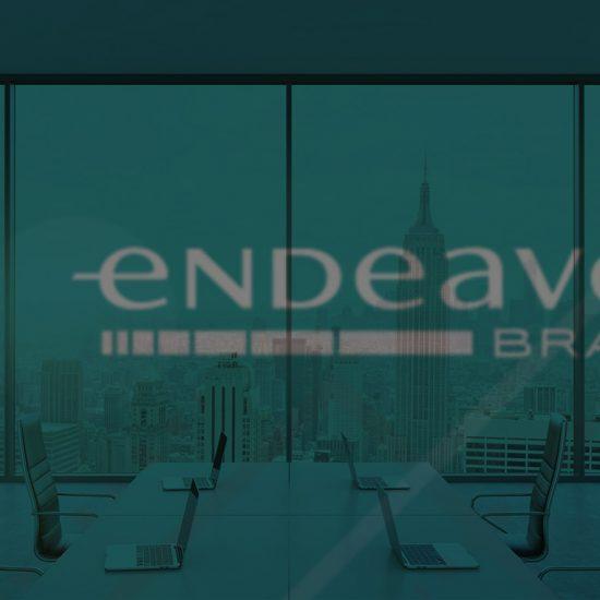 endeavor-do-brasil
