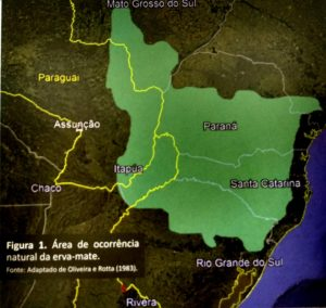 Mapa área erva-mate